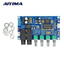 AIYIMA PT2399 amplificateur de Microphone numérique carte karaoké réverbération carte karaoké OK amplificateur Module double AC12V
