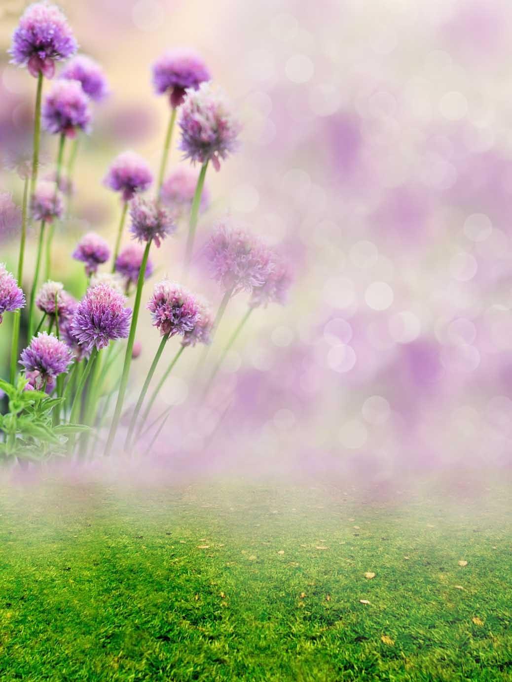 Fondo de caja mágica de vida para foto, flor púrpura, fotocall, boda,...