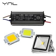 YNL lumière dinondation réelle haute puissance 50 W 30 W 20 W 10 W COB LED puce intégrée lampe à LED puce et pilote ensemble projecteur haute luminosité