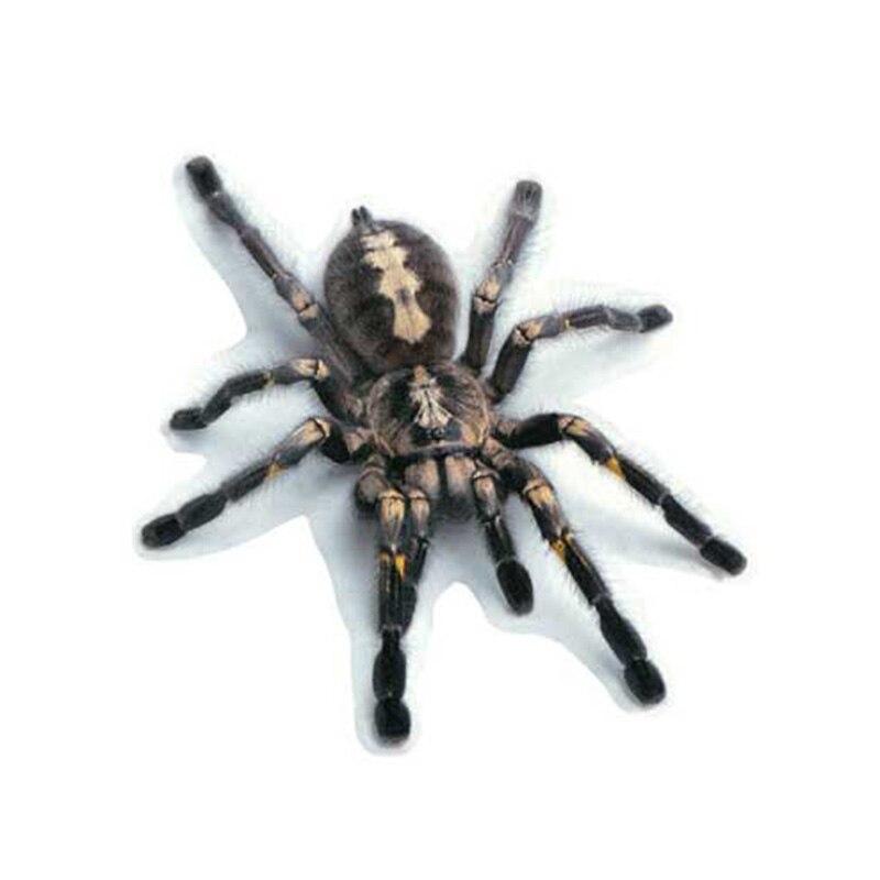 Car Universal 2019 Hot 3D PVC Car Sticker Lizard Scorpion Spider Cool Car Body Window Sticker Decal M8617