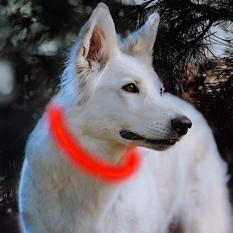 LED Dog Collar Light USB Rechargeable Glowing Dog Collars Luminous Pet Flash Night Charging Collars for Small Medium Large Dog