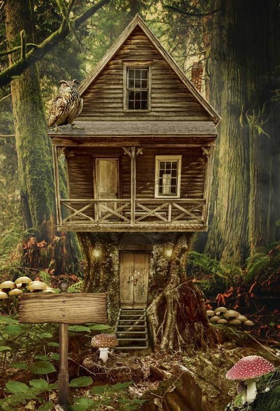 Laeacco сказка Грибной лес Сова деревянный дом фотографии Фоны Винил Custom фото фонов