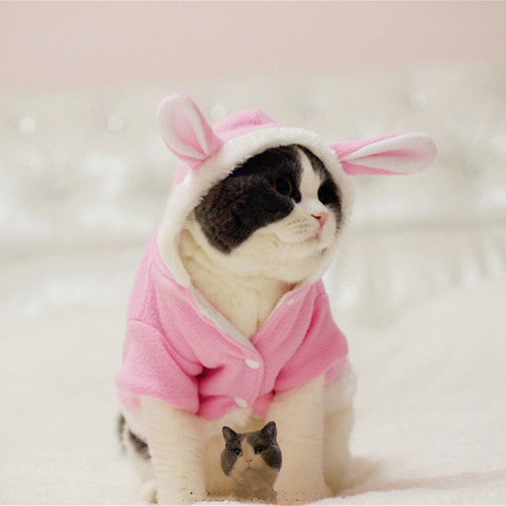 Traje de conejo de pascua grueso y cálido para gatos, ropa gratis, producto para mascotas a prueba de viento, Bonito traje de conejita para gatos, envío de invierno