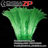 leading supplier chinazp factory 500pcslot 1214inch3035cm gorgeous and graceful dyed green rooster tail feathers