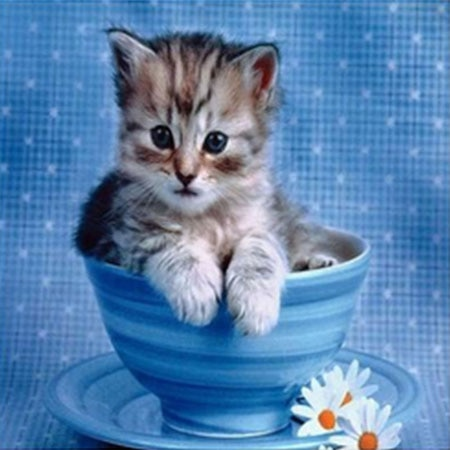 Merekomendasikan 5D Diy Berlian Lukisan Stitch Penuh Kucing Putaran Palang Pola Mosaik Rumah Kamar Tidur Dekorasi