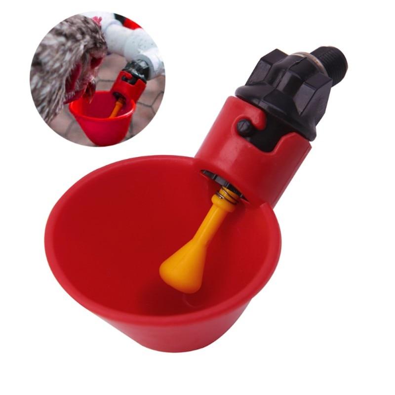 Aves de corral rojo taza de plástico de aves de corral pollo automático tazón pájaro chica agua potable