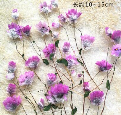10 unids/lote con Rama flor seca flores secas para Diy flor prensada artesanal tarjeta marcapáginas
