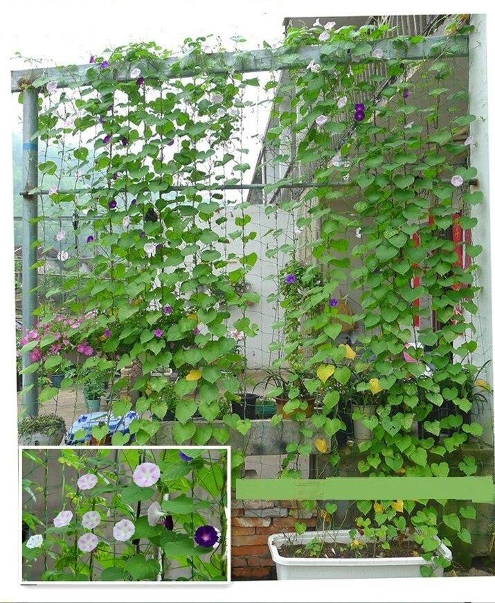0,9x1,8 м садовая сетка, лоза, альпинистская сетка, нейлоновая садовая сетка