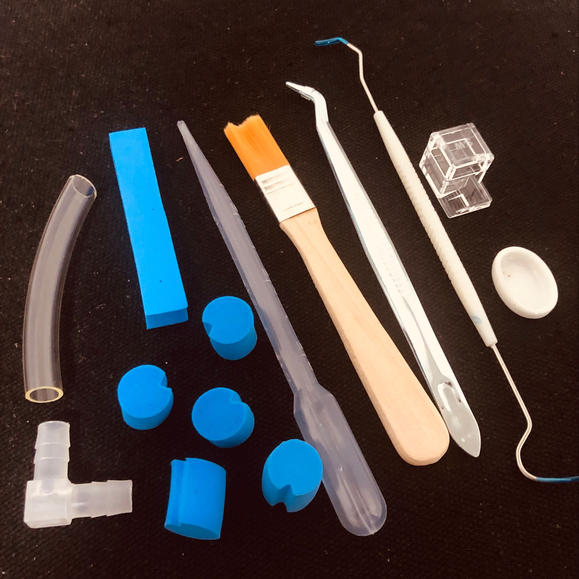 Juego 10 en 1 de herramientas acrílicas para granja de hormigas, suministros para casa de hormigas, accesorios para el cuidado de hormigas