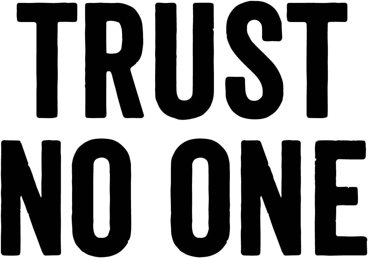 (2 uds) No confiar en una etiqueta de vinilo de los expedientes-X de david duchovny y gillian anderson 12,5 cm