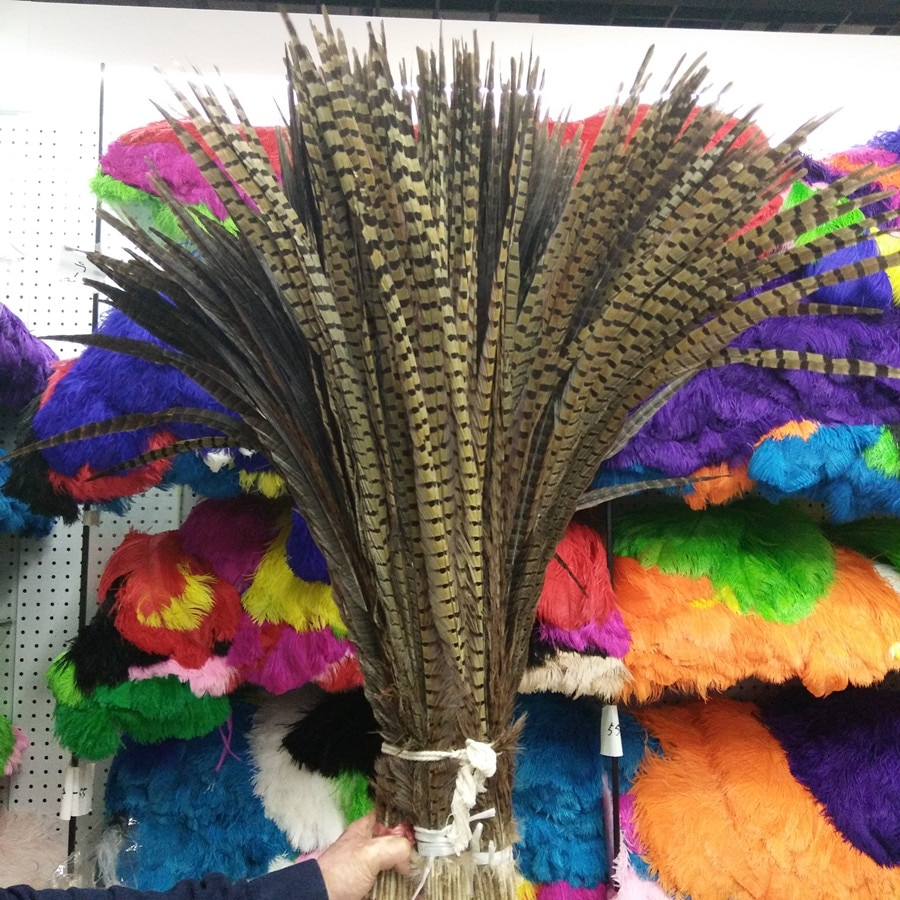 50pcs-beautiful-26-28inches-65-70cm-high-quality-natural-pheasants-feathers-diy-jewelry-art-performances-props-accessories