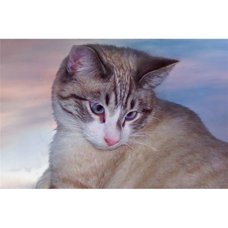 Nuevo diamante bordado animales dibujos animados diy diamante pintura Cruz puntada kits diamante mosaico azul gato cristal bordado M6984R