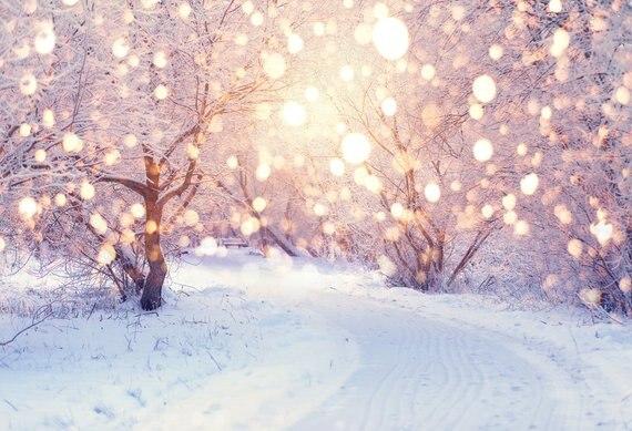 Neige hiver Landscrape arbre route noël Bokeh lumières toile de fond haute qualité ordinateur impression partie fond