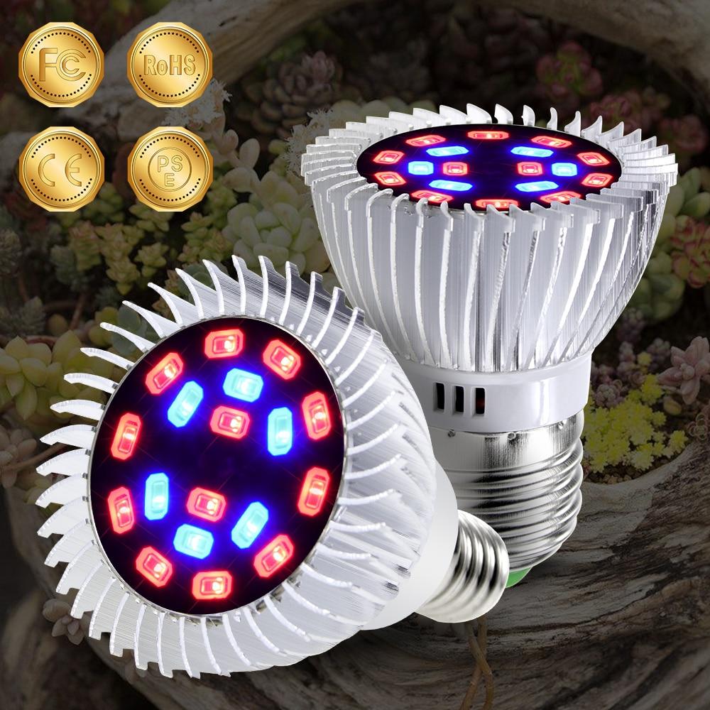 CanLing E27 lámpara LED Phyto E14, espectro completo LED Fitolampy 20W, planta de interior, tienda de campaña, caja de luz de plantas 220V, bombilla LED para cultivo de semillas
