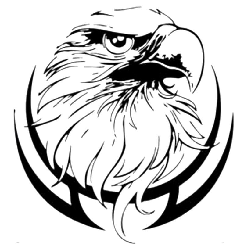 18.7x20cm wild evil eagles aves bardian vinil adesivos de carro da motocicleta decalque preto/prata S6-2434