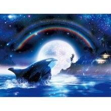 Carré complet/rond forage diamant broderie pleine lune baleine 5D bricolage diamant peinture point de croix strass mosaïque E09