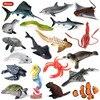 Oenux deniz yaşamı hayvanlar yunus yengeç köpekbalığı kaplumbağa modeli aksiyon figürleri figürler okyanus deniz akvaryumu minyatür eğitim oyuncaklar