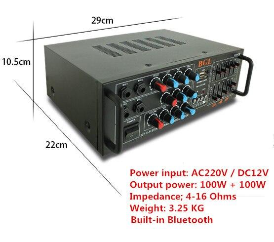 Ac220v/dc12v 100 واط + 100 واط KA-630 المهنية صدى الرقمي الكاريوكي المنزل مكبر مدمج بلوتوث مع معادلة مكافئ