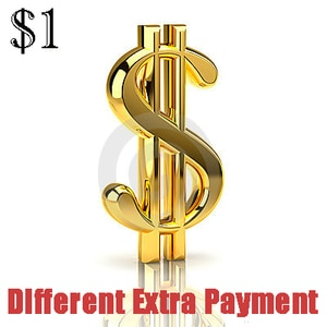 Payment difference for order on our shop