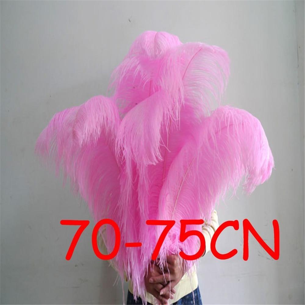 20 unids/lote 70-75cm teñido de plumas de avestruz Rosa plumas de avestruz 28-30 pulgadas ala avestruz pluma boda, pluma sk320