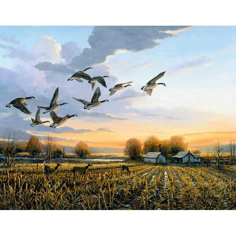 DIY Diamond Embroidery Mosaic wild duck Animal Picture Diamond Painting Cross Stitch landscap Needlework Living Room   WZ