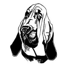 12.2*15.5CM Bloodhound Dog Car Stickers Fashion Waterproof Vinyl Decal Car Styling Bumper Accessorie