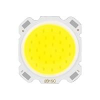 LED COB Chip 3W 5W 7W 10W 12W 15W High Power Light Beads Input 9-50V DIY LED Bulb Chip Outdoor Floodlight Spotlight Diode Lamps