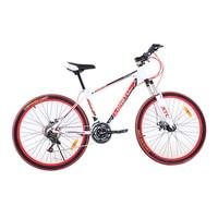 21-speed 24-inch Mountain Bike