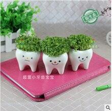 Bonsai Ceramic UOUwer Pot DIY Small Planter Succulent Plants Tooth Design KAR