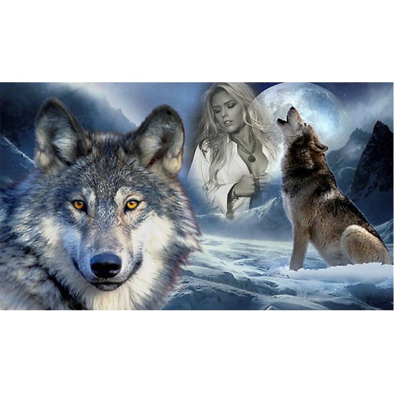 5D DIY Diamond Painting Snow Wolf&Beauty Cross-Stitch Kits 30*40cm Full Drill Resin Diamond Embroidery Diamond Mosaic Needlework