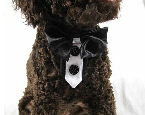 Estilo británico mascota perro moda para gato bowknot corbatas perrito guapo fiesta corbata disfraces de mascotas cachorro grooming 1 Uds S-XXL envío gratis