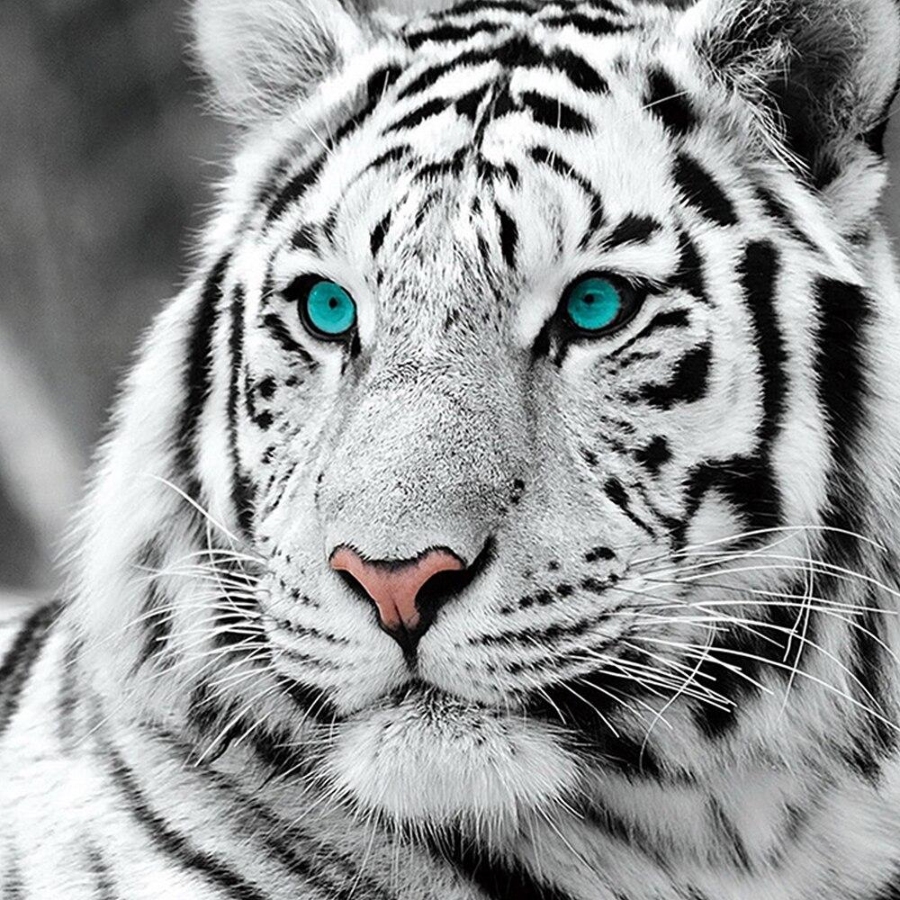 LZAIQIZG DIY 5D Full Diamond Painting Cross Stitch White tiger Embroidery Needlework Patterns Rhinestone kits