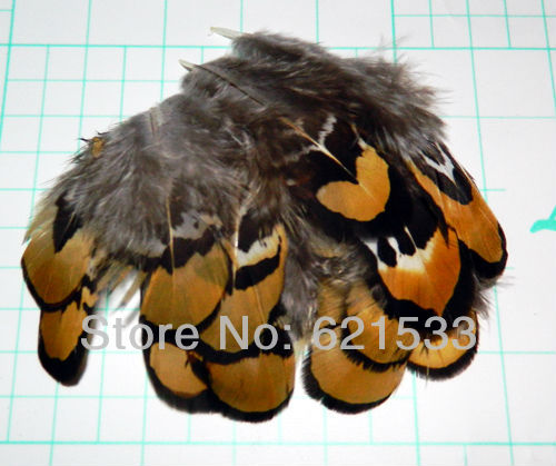 100Pcs/Lot 5-8CM GOLDEN YELLOW Reeves Venery Pheasant Plumage feathers,Reeves Pheasant feathers