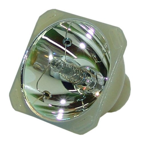 Compatible Bare Bulb EC.J1001.001 for Acer PD525D PD116P PD523 PD525 PD116PD Projector Lamp Bulb without housing