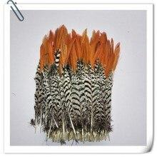 50pcs 5-10cm / 2-4 pollici reale naturale lady amherst fagiano piume piuma di vendita allingrosso per capelli accessori del mestiere monili che fanno