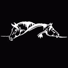 Dewtreetali Creative deux chevaux graphique voiture autocollant et décalcomanie drôle Animal voiture style noir/blanc super offre bonne qualité