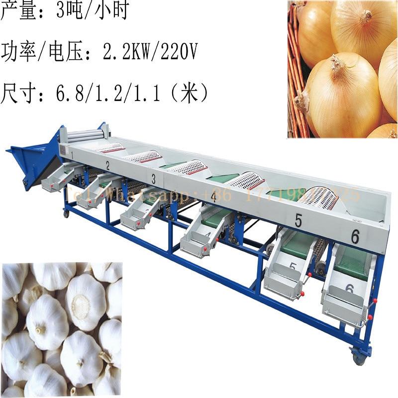 Máquina de classificação de cebola alho máquina de classificação de tamanho rodada máquina de classificador de frutas e vegetais e motoniveladora para venda