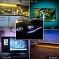 Светодиодная лента 2835SMD с питанием от USB, гибкая светодиодная лампа RGB для подсветильник Ки телевизора, рабочего стола, экрана, диодсветильник льник, 5 в постоянного тока, 1 м, 2 м, 3 м, 4 м, 5 м