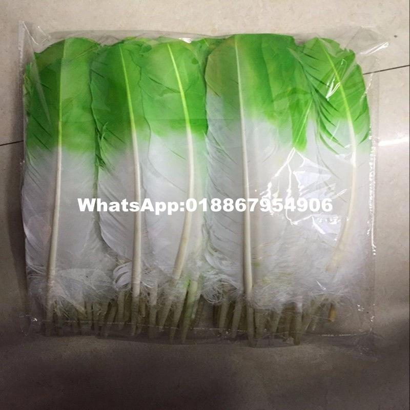 Двухцветные окрашенные турецкие круглые перья из крыльев 25-35 см (10-14 дюймов) белый с яблоко-зеленым верхом