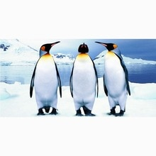 Customized Microfiber Beach Towel Penguins Print Bathroom Drying Towels Camping Yoga Picnic Mat Kids Blanket 70 X 140CM