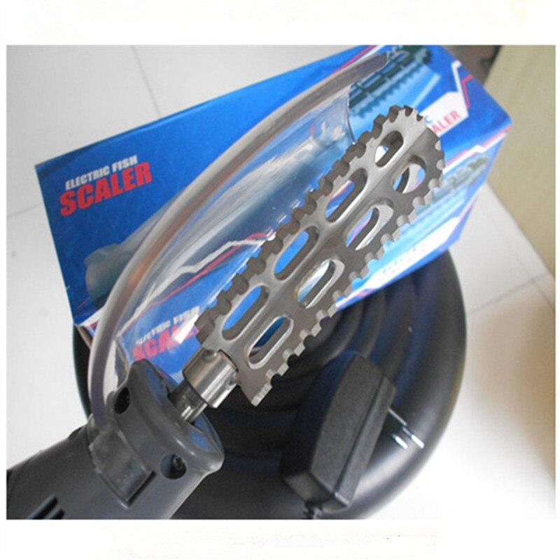 Escalador eléctrico de pescado para el hogar con cabezal de acero inoxidable/escamas de pescado sin cable máquina de descalado de escala para venta al por mayor