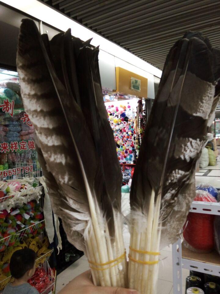 Perfekte 10 stücke erschrecken natürliche Crested Schlange-eagle federn 10-16 zoll/25-40 cm Kleidung zubehör bühne leistung diy Schmuck