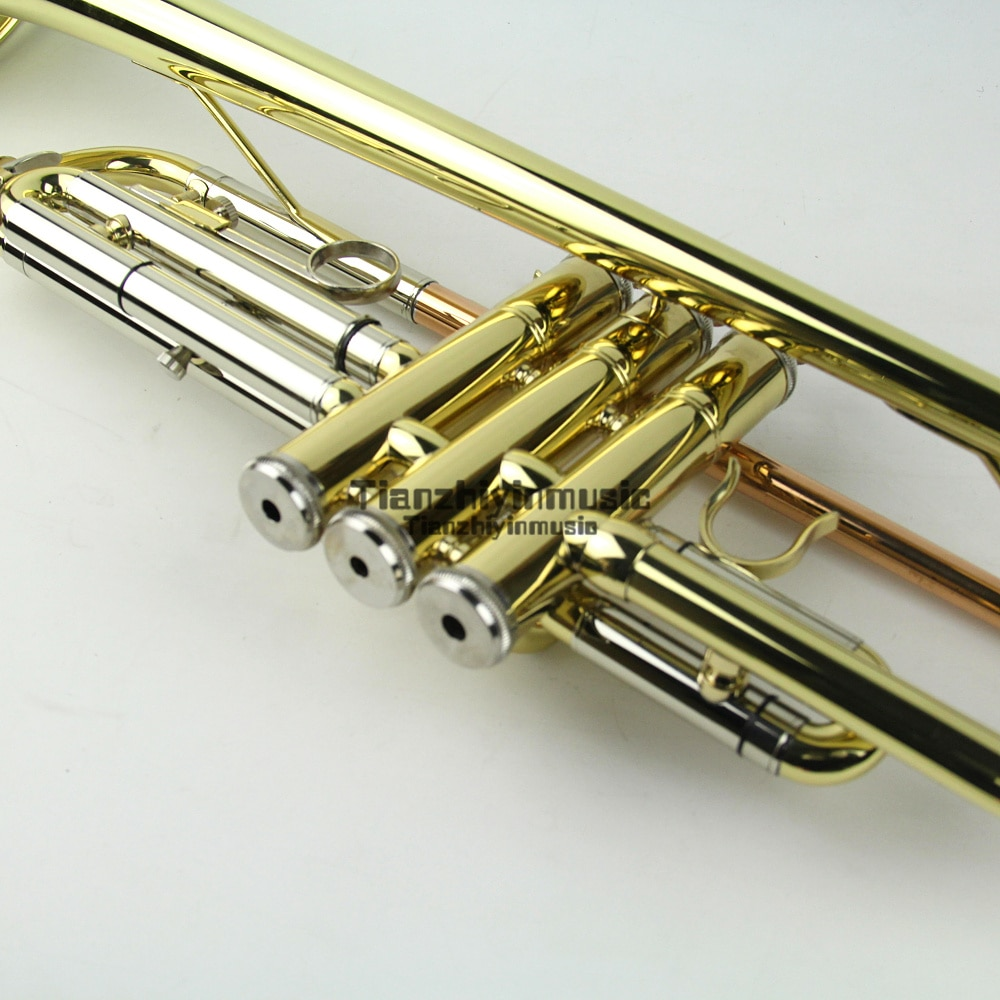 Banhado a Boa Técnica de Som Excelente Trompete bb