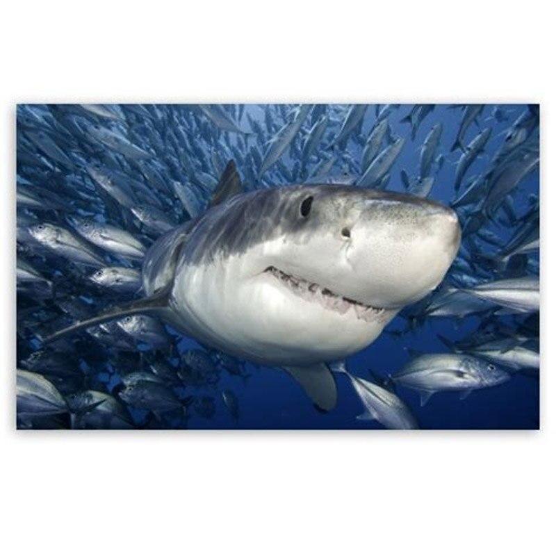 De Diamantes mosaico accesorios tiburón diyDiamond pintura completa cuadrado 5D foto con diamantes de imitación bordado de peces koi artZP-858