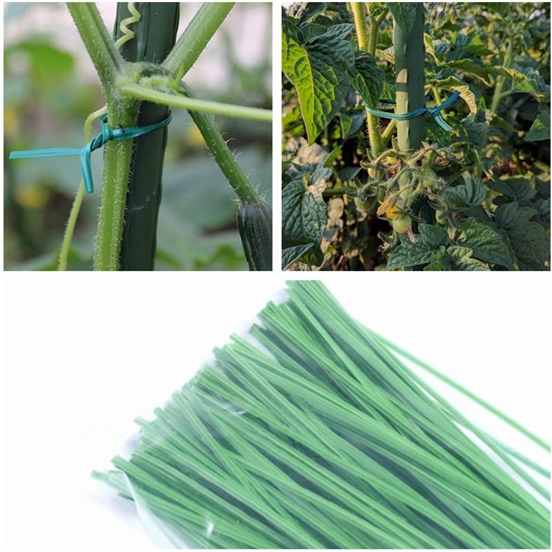 100buc verde grădinărit viță de vie cățărare plante cablu linii de legătură paranteze plante părți bonsai floare castraveți struguri rattan susține