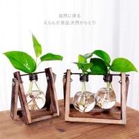 personal home hydroponic plants container vase glass transparent small fresh desktop decoration