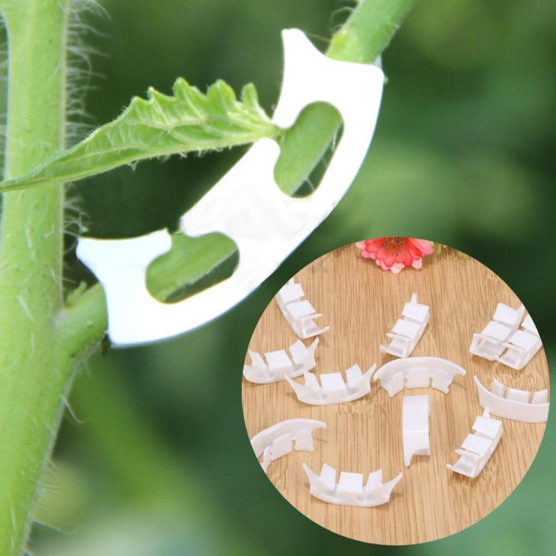 100Pcs צמח עגבניות קליפ אטב צמח גפנים ירקות חקלאות קליפ שיחי גפן קנוקנת קלסר צמחים קליפים עבור חממה