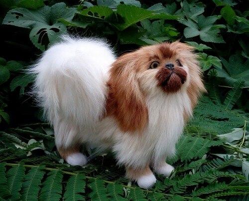 Около 20x17 см имитация Пекинская Реалистичная игрушечная собака модель домашнего украшения подарок t135
