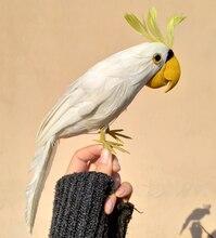 30cm beautiful white feathers parrot bird artificial cockatoo bird handicraft prop,home garden decoration gift p1910