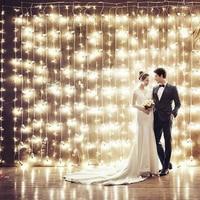 3m*3m 300 LEDs String light flashing lane LED String curtain light Christmas home garden festival Wedding Fariy Night light Lamp